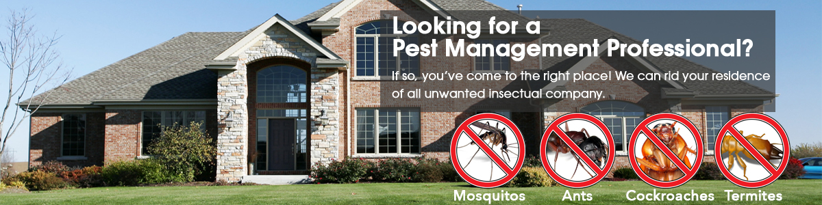 pest_control-2